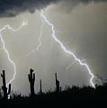 Arizona Desert Storm by James BO  Insogna