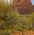 Arizona Outback 3 by Mike McGlothlen