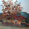 Arkansas Autumn by Nadine Rippelmeyer