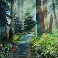 Around The Path by Kerri Ligatich