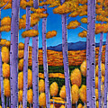 Aspen Country II by Johnathan Harris