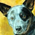 Australian Cattle Dog Blue Heeler On Gold by Dottie Dracos