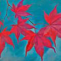 Autumn Crimson by William Jobes