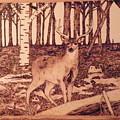 Autumn Deer by Andrew Siecienski