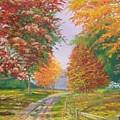 Autumn Drive by Tan Nguyen