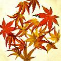 Autumn Flury by Rebecca Cozart