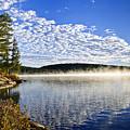 Autumn Lake Shore With Fog by Elena Elisseeva