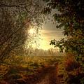Autumn Mist by Kim Shatwell-Irishphotographer