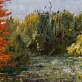 Autumn  Pond by Nancy Albrecht