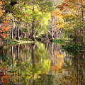 Autumn Reflection On Florida River by Carol Groenen