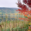 Autumn Scenic Acadia National Park Maine by George Oze