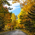 Autumn Scenic Drive by George Oze