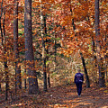 Autumn Stroll by Gayle Johnson