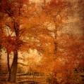 Autumn Tapestry - Lake Carasaljo by Angie Tirado