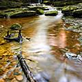 Autumnal Waterfall by Meirion Matthias
