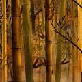 Bamboo Heaven by Bedros Awak