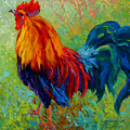 Band Of Gold - Rooster by Marion Rose