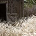 Barn Door by Idaho Scenic Images Linda Lantzy