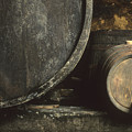 Barrels Of Wine In A Wine Cellar. France by Bernard Jaubert