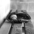 Baseball Still Life by Susan Schumann
