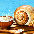 Bath Salts And Sea Shell By The Pool by Sandra Cunningham