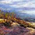 Beach Dune 1 by Peter R Davidson