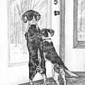 Beagle-eyed - Beagle Dog Art Print by Kelli Swan