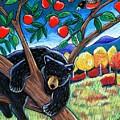Bear In The Apple Tree by Harriet Peck Taylor