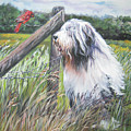 Bearded Collie With Cardinal by Lee Ann Shepard