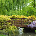 Beautiful Garden Art by Boon Mee