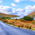 Beautiful Irish Countryside Of County Galway by Mark E Tisdale