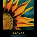 Beauty by Bonnie Bruno