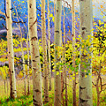 Beauty Of Aspen Colorado by Gary Kim