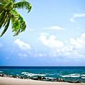 Belize Private Island Beach by Ryan Kelly