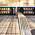 Benches At The High Line Park by Eddy Joaquim