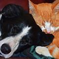 Best Friends by Susie Fisher