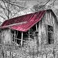 Big Red by Debra and Dave Vanderlaan