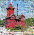 Big Red Photomosaic by Michelle Calkins