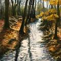 Bike Path Brook by Jack Skinner