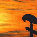 Bird Of Pray by Don McMahon