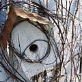 Birdhouse Brambles by Lauri Novak