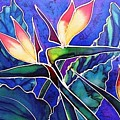 Birds Of Paradise II by Francine Dufour Jones