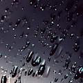 Black Rain by Steven Milner