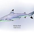 Blacktip Shark by Ralph Martens