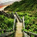 Block Island by Lourry Legarde