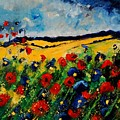 Blue And Red Poppies 45 by Pol Ledent