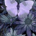 Blue Butterfly by JQ Licensing