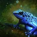 Blue Frog by Caroline Jamhour