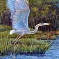 Blue Heron In Flight by Susan Jenkins
