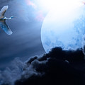 Blue Moon - 7D12372 Print by Wingsdomain Art and Photography